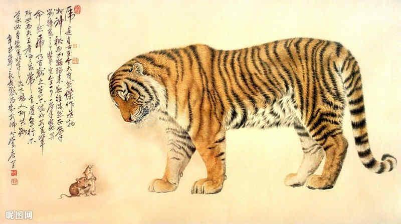 cuento, tigre