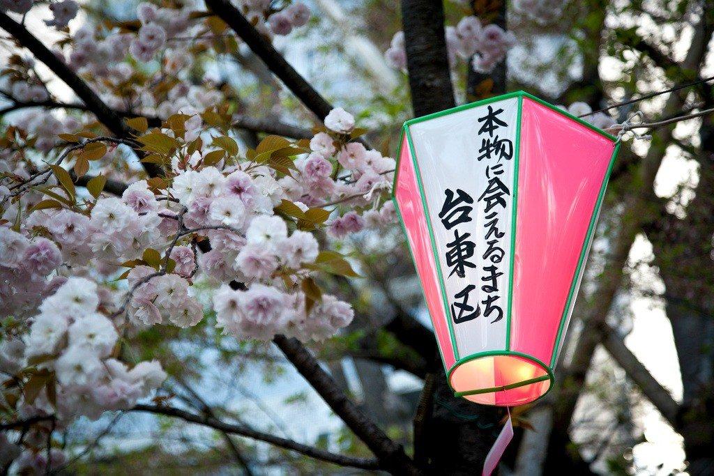 El cerezo de la nodriza, leyenda japonesa