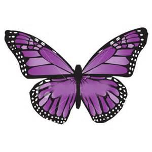 microrrelato, ángel fabregat, mariposa