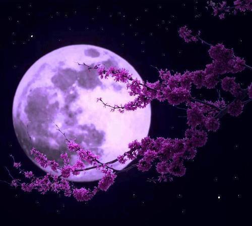 Poema, Jaime Sabines, La Luna