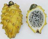 Yellow pitaaya