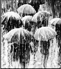Margarita Schult, oda, paraguas