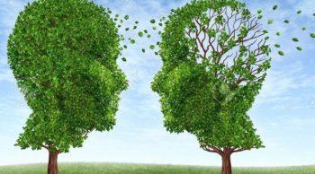 El cuento de los dos árboles