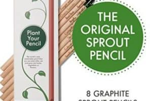 Lápices plantables Sprout